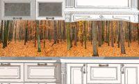 Фартук для кухни. Осенний лес